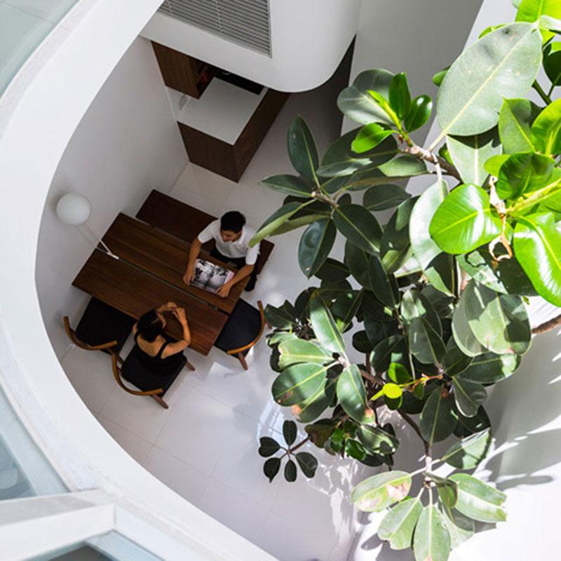 Ngôi nhà rộng 3.5m với thiết kế giếng trời cắt ngang hình chữ D